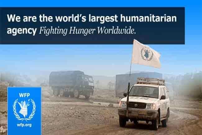 Job in WFP