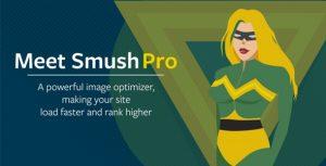 Download Premium Version of WordPress Plugin WP Smush Pro v3.8.8