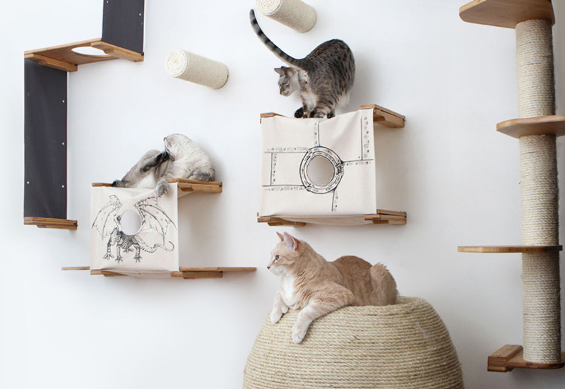 Best 6 Living Room Decor Ideas with Stylish Cat Furniture