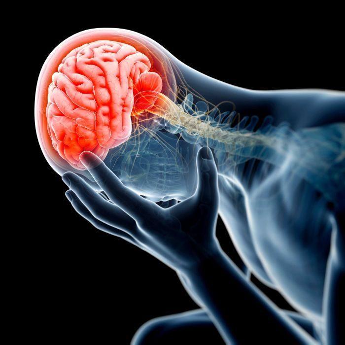 Brain Injury Victims Need a Lawyer